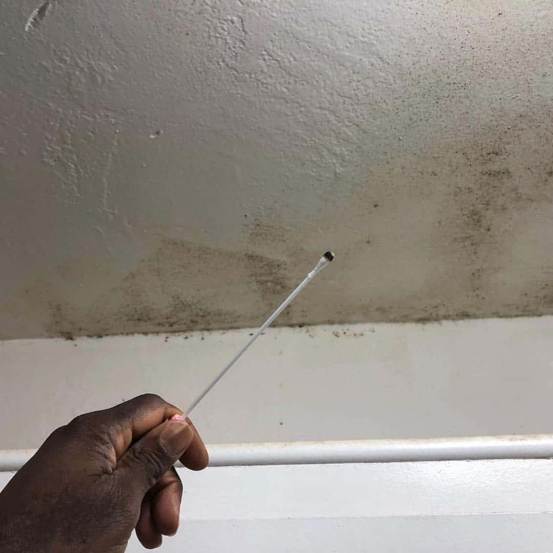 mold inspection delray beach
