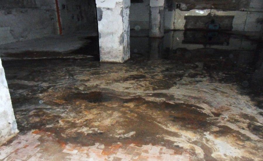 sewage removal coral springs